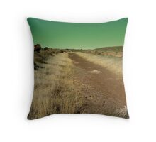 Road to Damascus Throw Pillow