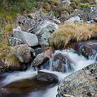Mountain Stream IV by samg