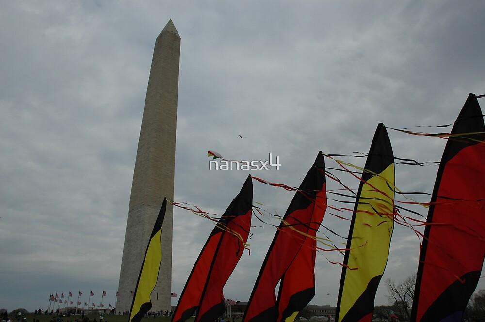 The Washington Monuments  by nanasx4
