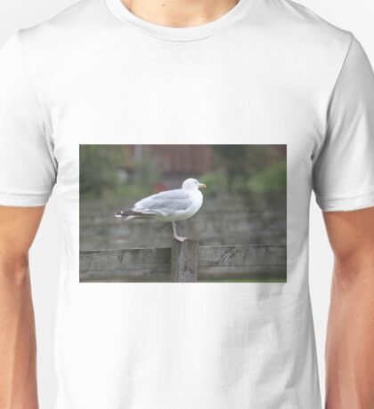 Herring Gull. Unisex T-Shirt