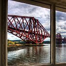 The Bridge from the Light Tower by Tom Gomez