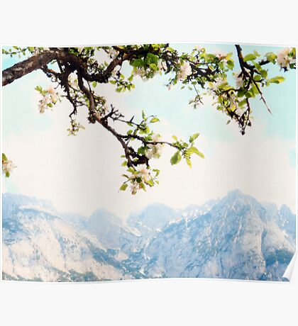 Apple Blossoms and Mountains  Poster