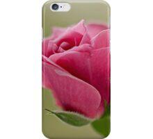Pink rose bud opening iPhone Case/Skin