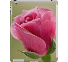 Pink rose bud opening iPad Case/Skin