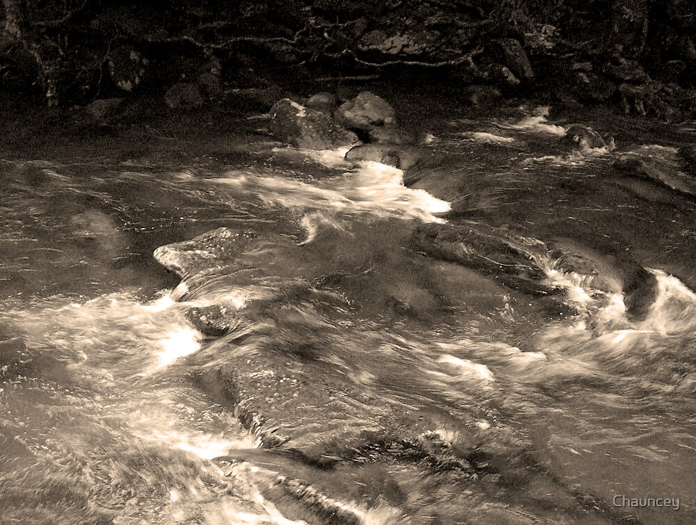 Stream of Light by Chauncey