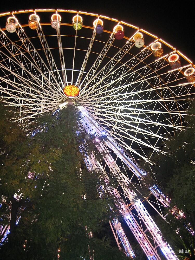 biot ferris wheel by aliw