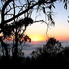 Sunrise - Mt Barker Summit - Adelaide Hills by Leeo