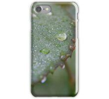 Morning Dew (1) iPhone Case/Skin
