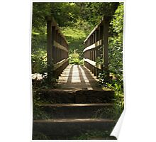 Sunlit Bridge Poster