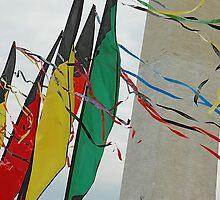 Washington Monument and kites by nanasx4