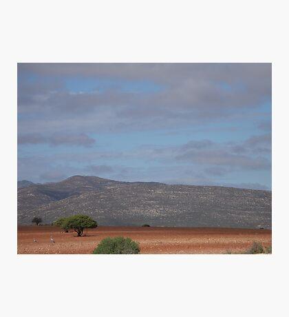 Karoo Landscape Photographic Print