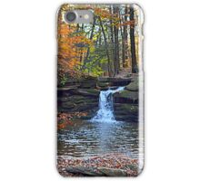 deep in the mountains of Pennsylvania iPhone Case/Skin