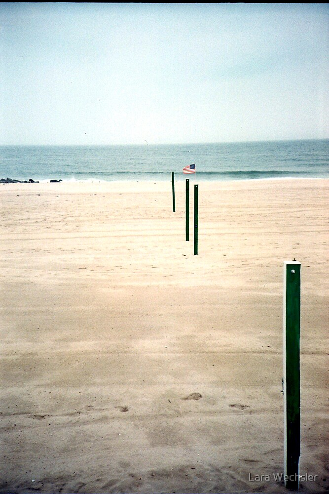 Poles to the Ocean by Lara Wechsler