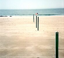 Poles to the Ocean by Lara Wechsler