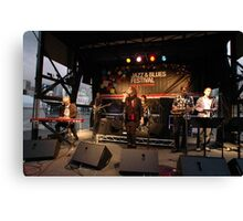 Uncle Jed on stage, Darling Harbour 2010 Canvas Print