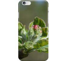 Apple tree blossom iPhone Case/Skin