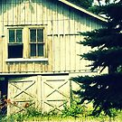 Abandoned Farm by Sheri Nye