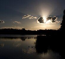LILYDALE LAKE by hugo