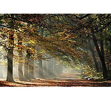 Going out on a bright November morning Photographic Print