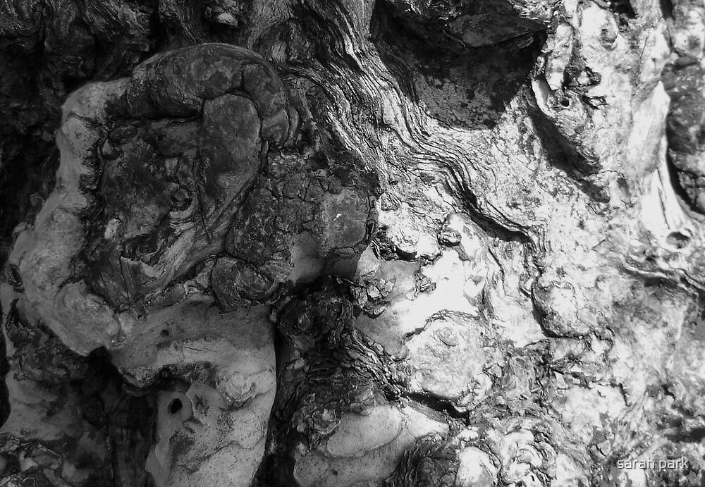 gnarled bark by sarahcro123