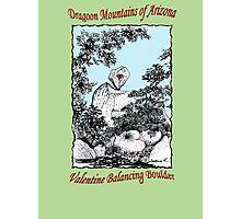 Valentine Balancing Rock in the Arizona Dragoon Mountains Photographic Print
