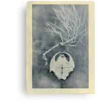 Tortoise Shell and Plant Skeleton Metal Print
