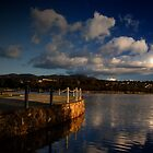 LILYDALE LAKE 5 by hugo