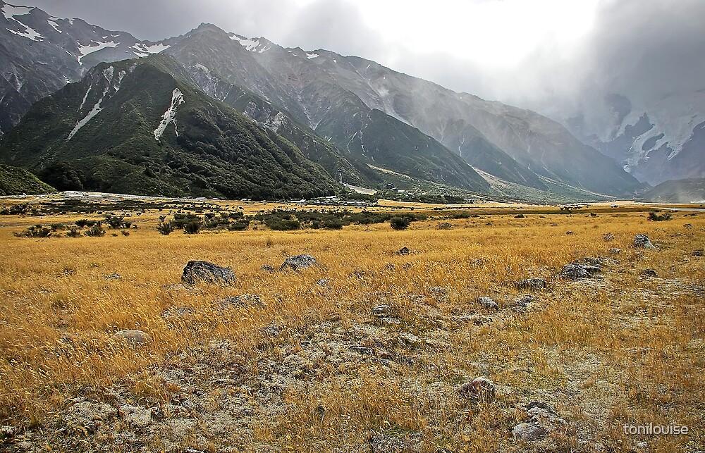 Aoraki..Mt Cook National Park by tonilouise