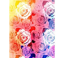 pattern of roses Photographic Print