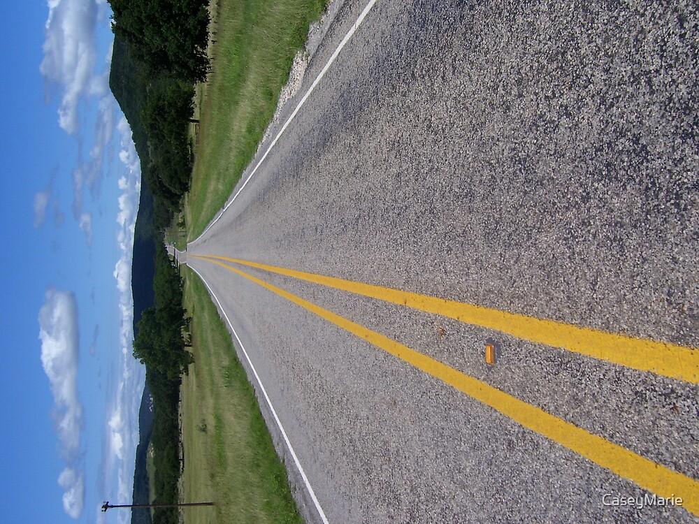 road by CaseyMarie