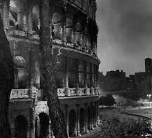 Colosseum in Rome by iristudiophoto