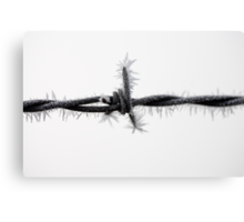 Frozen Barb Canvas Print