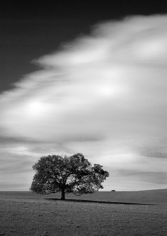 Yadin by Ashley van Raaphorst
