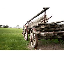 Cart Behind the Horse Photographic Print