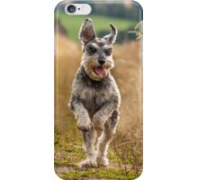 Miniature Schnauzer Fun iPhone Case/Skin