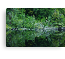 Gordan River No.2 Canvas Print