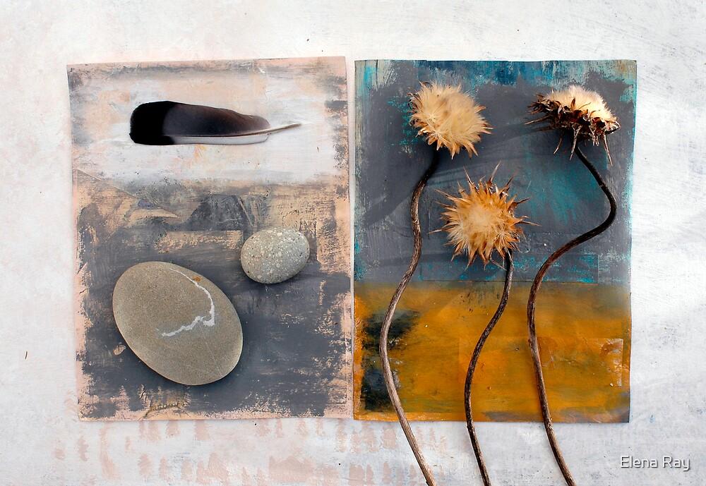 Still Life 1 by Elena Ray