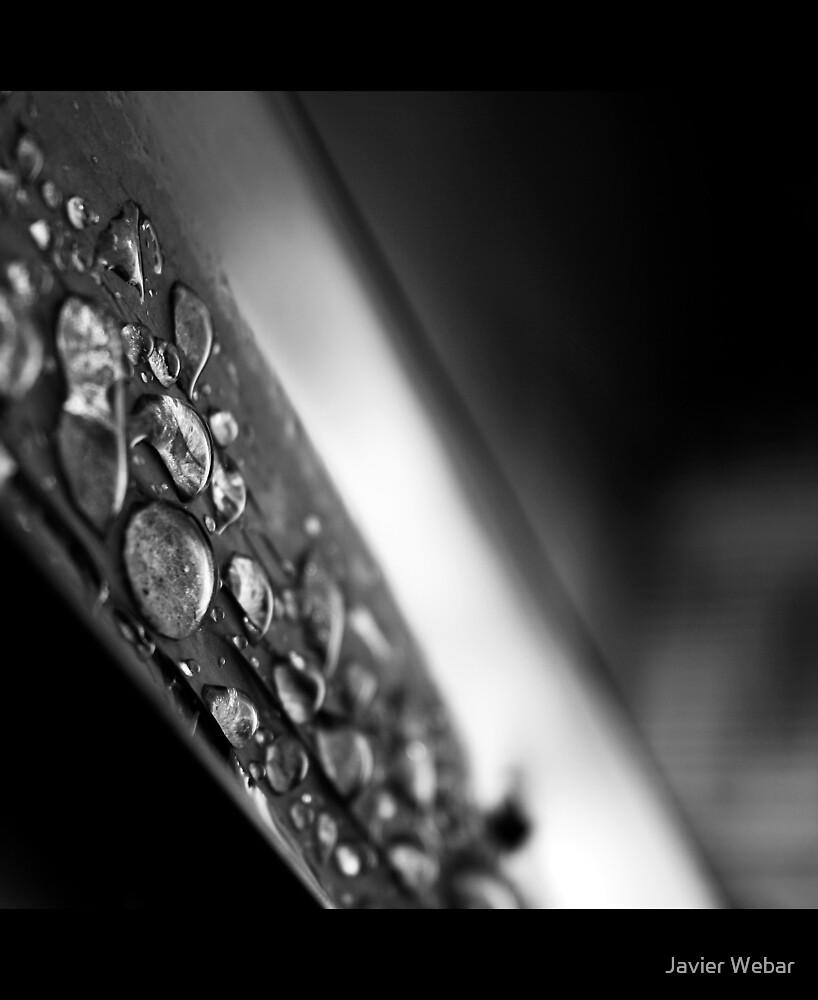 Silver Drops by Javier Webar
