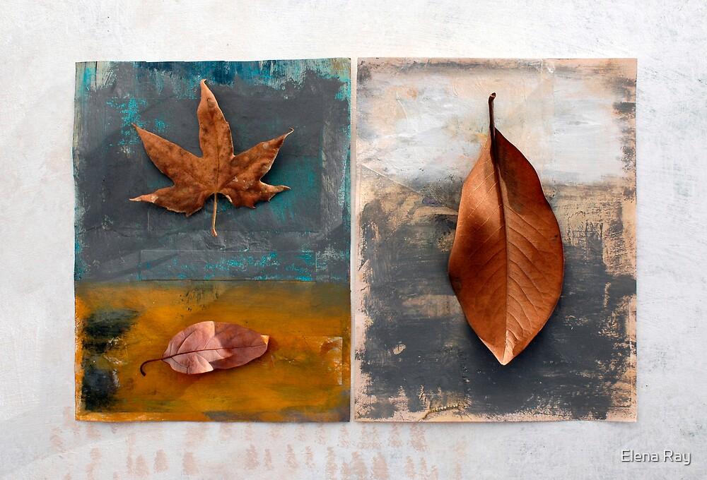 Still life 4 by Elena Ray