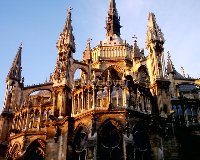 Notre Dame look-a-like in France by blueclover