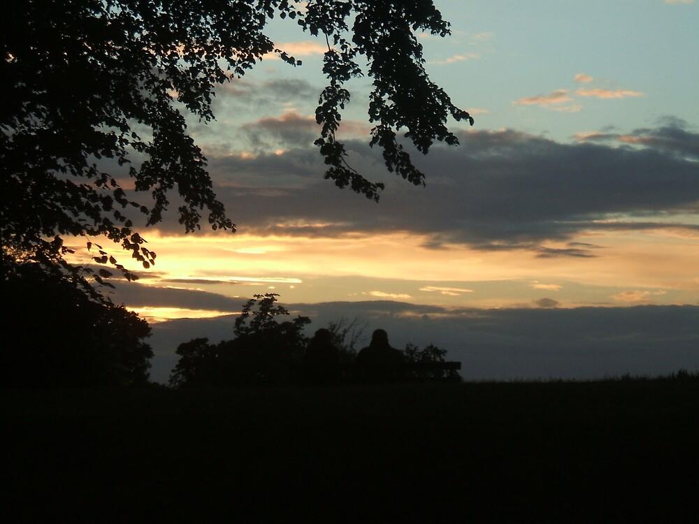 Stoke Park Sunset by Nx75