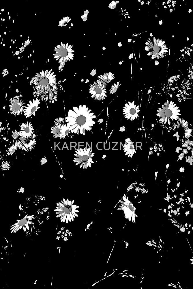 flower explosion by KAREN CUZNER