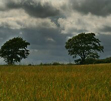 Storm Brewing by Ian Smith