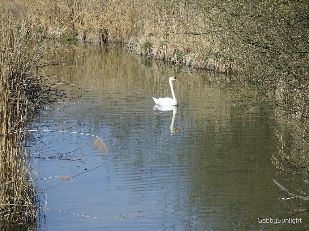 The Swan by GabbySunlight