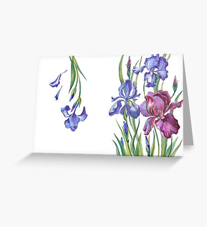 Beautiful flowers irises Greeting Card