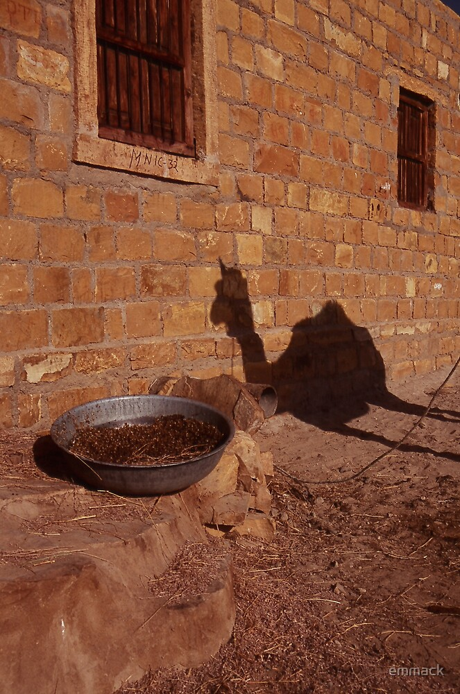 Muli Shadow, India by emmack