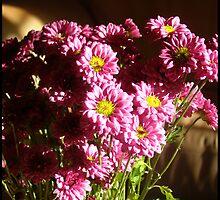 Bloom! by tazzae
