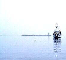 Alone In The Fog 4 - Kohlruss Photography by Larry Kohlruss