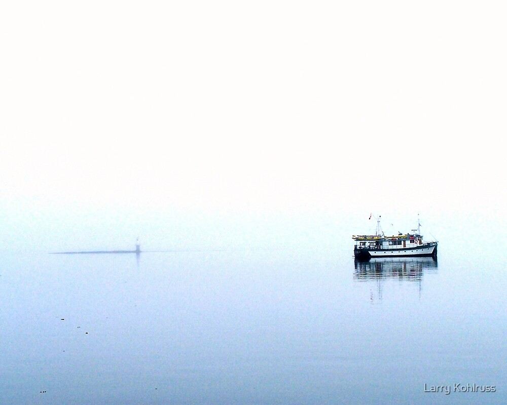 Alone In The Fog 6 - Kohlruss Photography by Larry Kohlruss