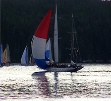 Van Isle 360, 2007 HMCS Oriole by Larry Kohlruss